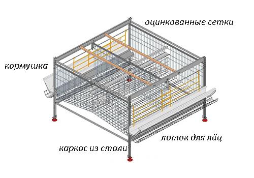 конструкция клетки для кур несушек