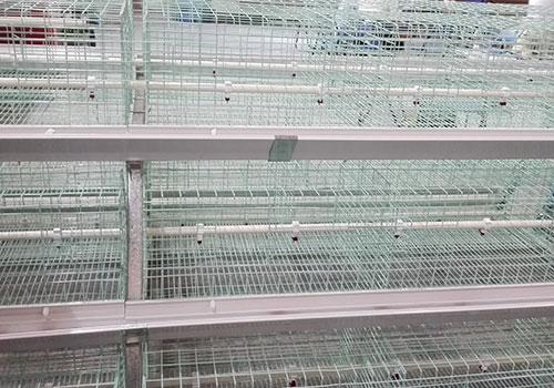 Клетки для бройлерных кур с пластиковыми кормушками