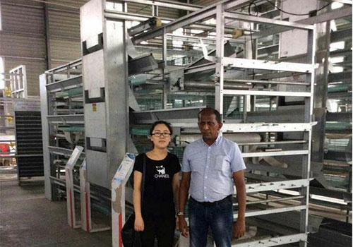 клиент из Шри-Ланки купил клеточные батареи для кур несушек